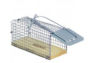 Piège cage à souris, 12 cm