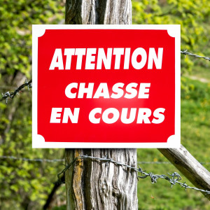 """Panneau """"ATTENTION CHASSE EN COURS"""" en aluminium 30 x 25 cm"""
