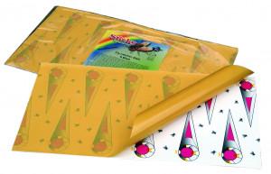 Bande attrape-mouches collante Sticky 580x320 mm, lot de 6